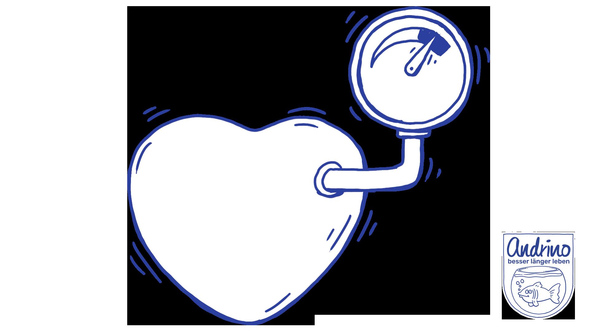 Bluthochdruck - Chronische Erkrankung oder Regulationsverlust?