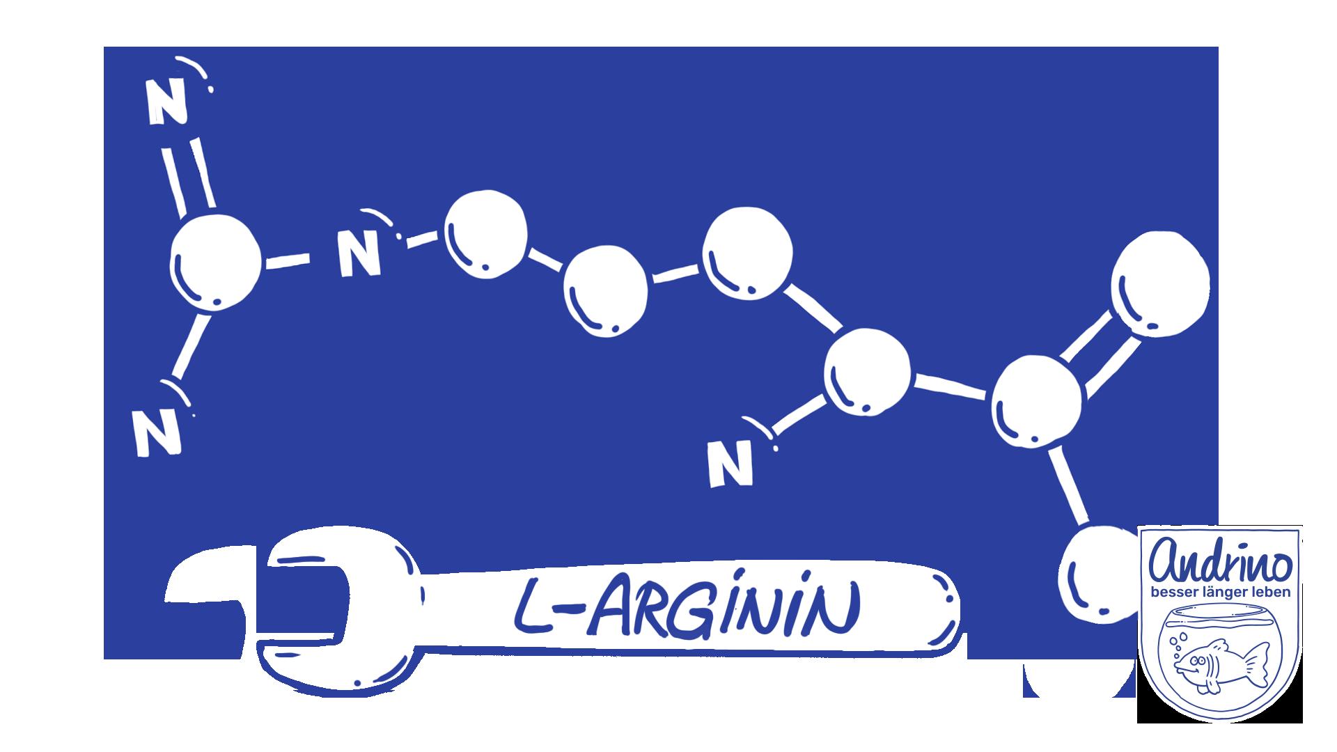 L-Arginin: ein vielseitiger Mikronährstoff bei Bluthochdruck und Arteriosklerose