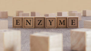 Die systemische Enzymtherapie
